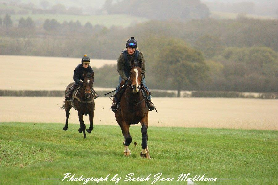 Working On The Grass Gallops