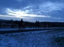 Frosty On The Gallops