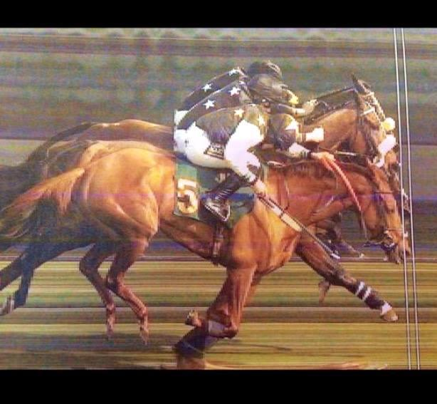 Ogaritmo Photofinish At Fakenham