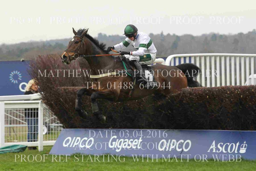 Jimmy Ascot Jumping